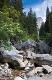 Yosemite landskap Arkivfoto