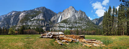 Yosemite Meadow panorama Royalty Free Stock Photo