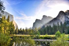 Yosemite meadow view royalty free stock images