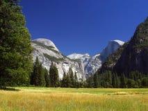Yosemite Meadows Royalty Free Stock Image