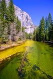 Yosemite Merced flod och el Capitan i Kalifornien Royaltyfria Foton