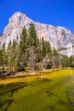 Yosemite Merced flod och el Capitan i Kalifornien Royaltyfri Bild