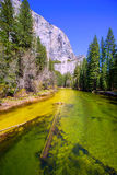 Yosemite Merced River and el Capitan in California Royalty Free Stock Photos