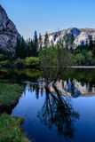 Yosemite Mirror Lake Reflection. I am glad to take this amazing shot at the amazing Yosemite National Park. The reflection of mirror lake is just as it is Royalty Free Stock Images