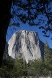 Yosemite - ¡ n di EL Capità Immagini Stock