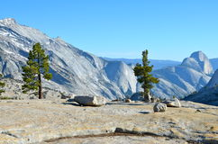 Yosemite Nationaal Park, Californië Royalty-vrije Stock Afbeelding