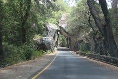 Yosemite Nationaal Park - Gevallen Keien Stock Fotografie