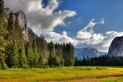 In Yosemite National Park Royalty Free Stock Photos