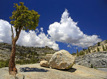 Yosemite National Park. Royalty Free Stock Photography