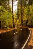 Yosemite National Park in Californa Stock Photo