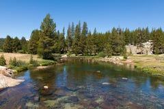 Yosemite national park in California Royalty Free Stock Images