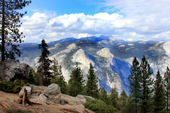 Yosemite National Park Stock Images