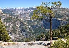 Yosemite National Park. California,USA Royalty Free Stock Photo