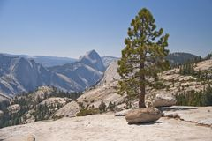 Yosemite National Park,California,USA Royalty Free Stock Photography