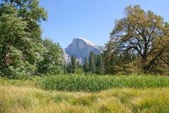 Yosemite National Park, California, USA. Royalty Free Stock Images
