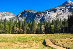 Yosemite National Park in California, USA. A wooden boardwalk leading into the wilderness in Yosemite National Park, California, USA Stock Photos