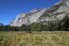Yosemite National Park Royalty Free Stock Image