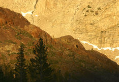 Yosemite National Park in Gold. An abstract of the mountains around Tioga Pass at Yosemite National Park glowing a rich gold in the afternoon sun royalty free stock photos