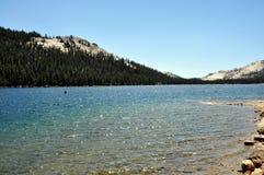 Yosemite National Park lake. Yosemite National Park (California's Sierra Nevada mountains) - Beautiful lake in the park Stock Photo