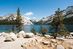 Yosemite national park lake tenaya Royalty Free Stock Photo