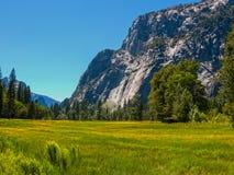 Yosemite National Park landscape Stock Photography