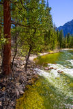 Yosemite National Park Merced River in California Royalty Free Stock Photos