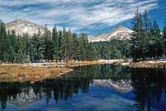 Yosemite National Park Stock Images