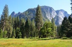 Yosemite National Park, Nevada in North America.  royalty free stock image