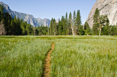 Yosemite National Park. One of the most famous National parks in California USA Stock Photography