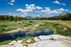 Yosemite National Park. One of the most famous National parks in California USA Royalty Free Stock Photos