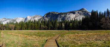 Yosemite National Park. Panoramic image of a boardwalk leading into the forest in Yosemite National Park Royalty Free Stock Images