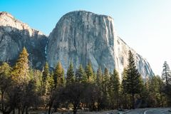 Yosemite National Park Snowy Mountains. Yosemite National Park in California America. Snowy Mountains over the forest royalty free stock photos