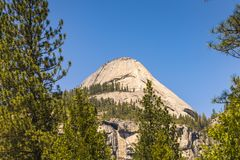 Yosemite National park on sunny day,Yosemite np,California,us royalty free stock photo