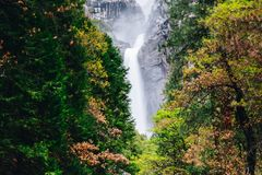 Yosemite National Park is a United States national park. Lying in the western Sierra Nevada of California, Designated a World Heritage Site in 1984 Stock Images