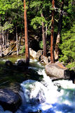 Yosemite National Park, USA Royalty Free Stock Photos