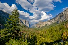 Yosemite National Park Valley summer landscape. From Tunnel View. California, USA Stock Photo