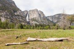 Yosemite National Park. Waterfall at the Yosemite National Park in California Royalty Free Stock Photography