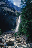 Yosemite nationalpark Royaltyfri Bild