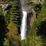 Yosemite nationalpark arkivbilder