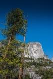 Yosemite nationalpark Arkivfoto