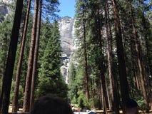 Yosemite Nationalpark Lizenzfreies Stockfoto