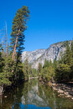 Yosemite nationalpark arkivfoto