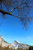 Yosemite nationalpark royaltyfria bilder