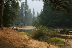 Yosemite Nationalpark Amerika Royalty-vrije Stock Afbeelding