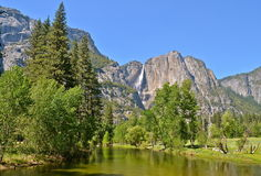 Yosemite nationalpark, Kalifornien Royaltyfri Foto