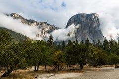 Yosemite nationalpark, Kalifornien Royaltyfri Fotografi
