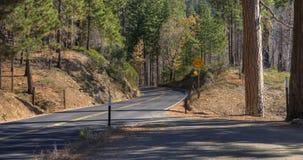 Yosemite nationalpark USA fotografering för bildbyråer