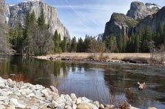 Yosemite NP Royalty Free Stock Image