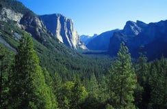 Yosemite NP, Californië Stock Foto's