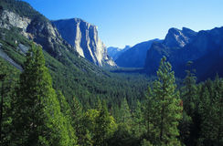 Yosemite NP, California Stock Photos